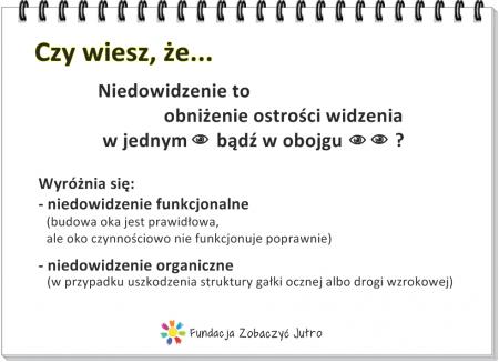 niedowidzenie-organiczne-funkcjonalne-rehabilitacja-wzrok